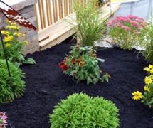 Double Shredded Black Dyed Mulch The Mulch Connection